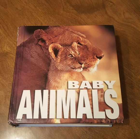 BABY ANIMALS BOOK VMB PUBLISHERS